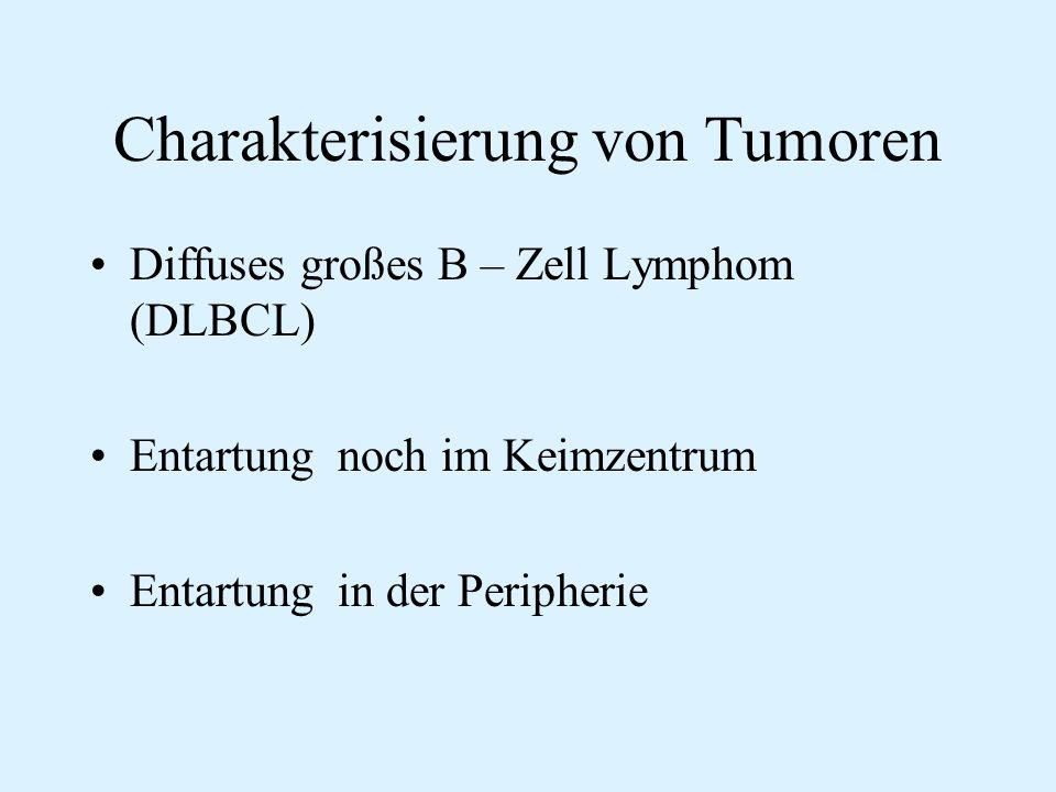 Charakterisierung von Tumoren