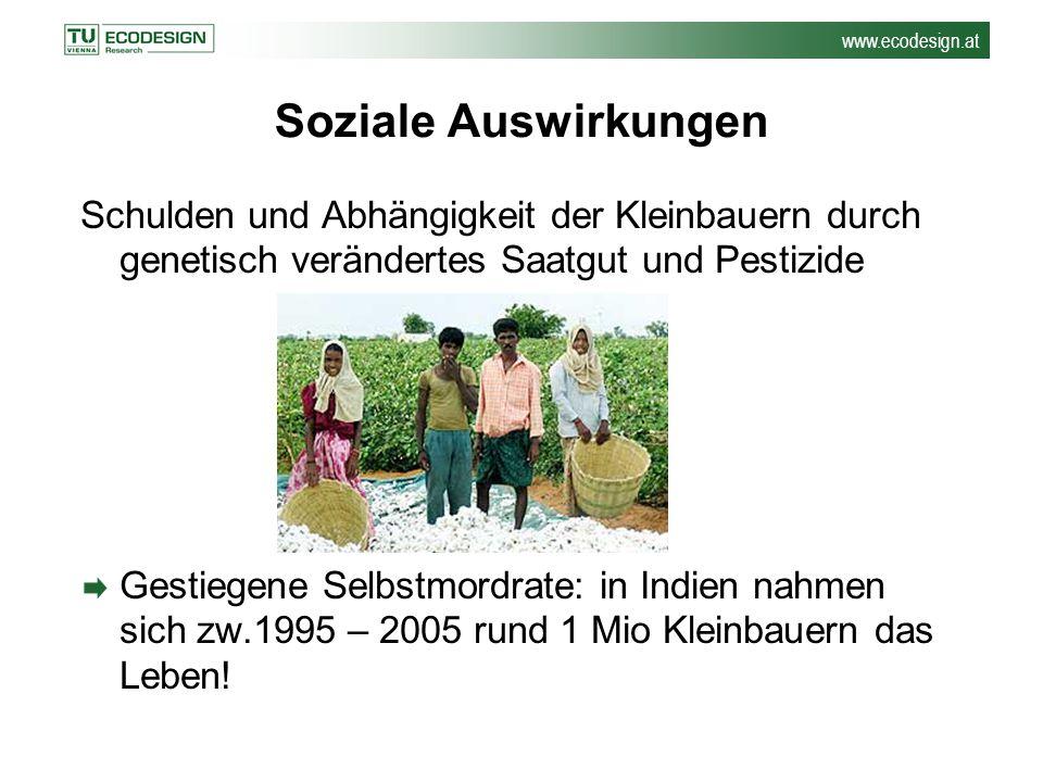 Soziale Auswirkungen Schulden und Abhängigkeit der Kleinbauern durch genetisch verändertes Saatgut und Pestizide.