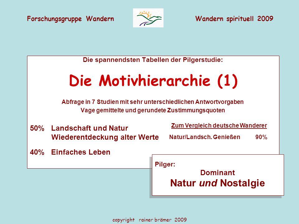 Die Motivhierarchie (1)