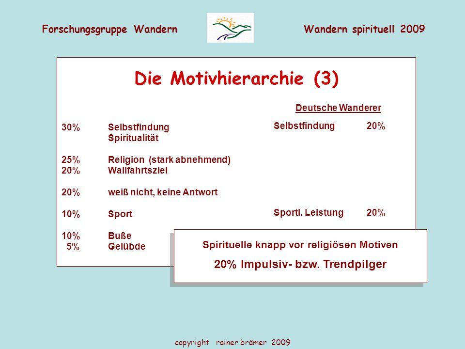 Die Motivhierarchie (3)