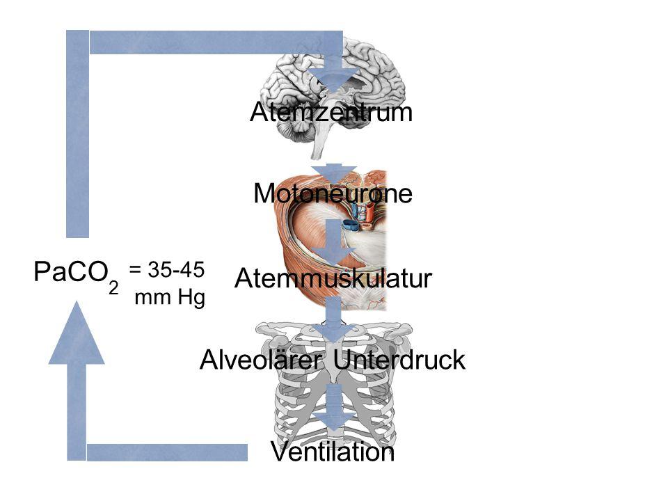 Alveolärer Unterdruck