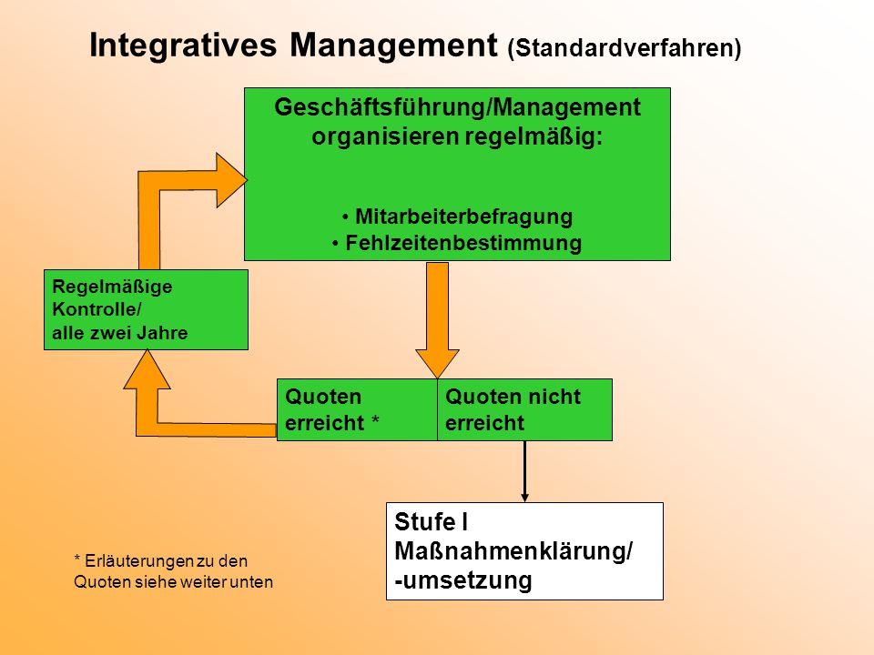 Integratives Management (Standardverfahren)