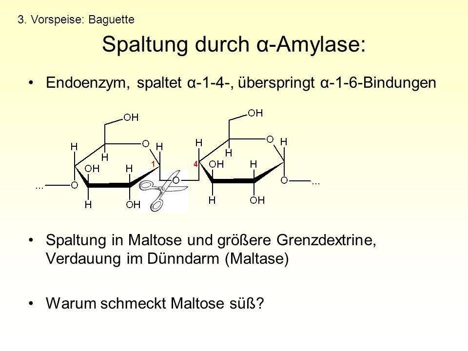 Spaltung durch α-Amylase: