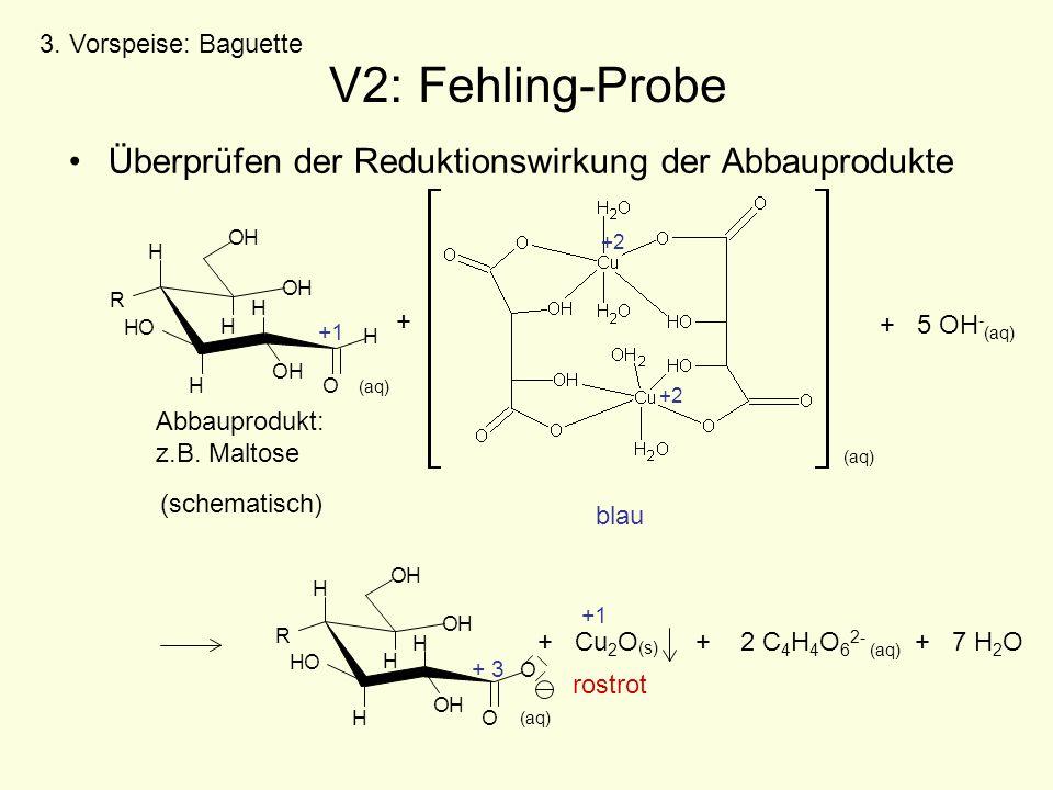V2: Fehling-Probe Überprüfen der Reduktionswirkung der Abbauprodukte