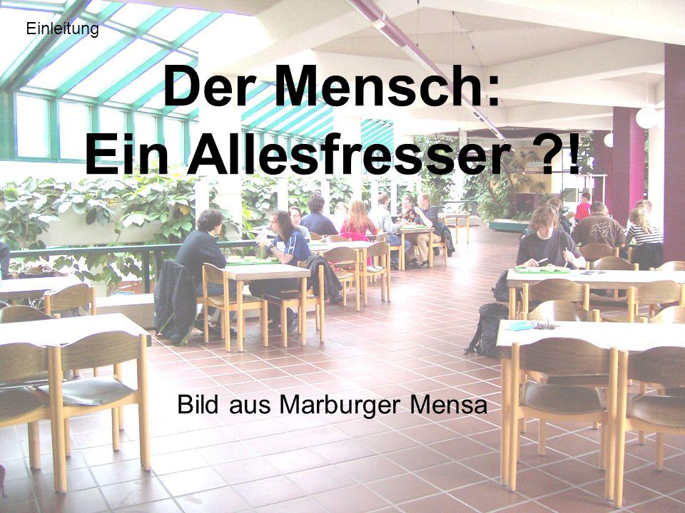 Der Mensch: Ein Allesfresser ! Bild aus Marburger Mensa