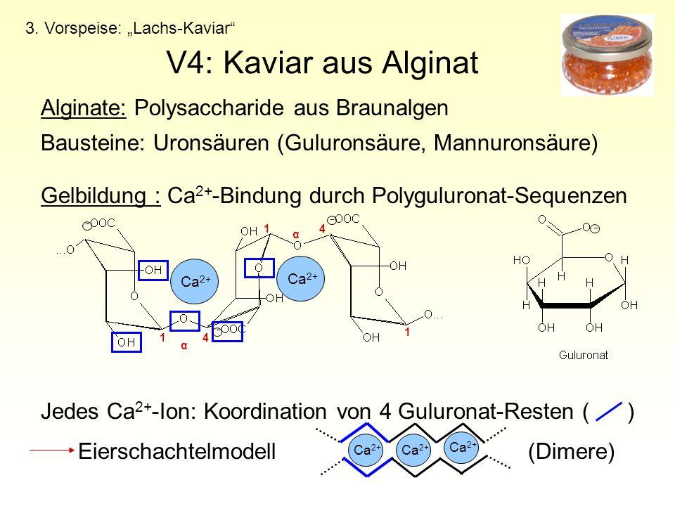 V4: Kaviar aus Alginat Alginate: Polysaccharide aus Braunalgen