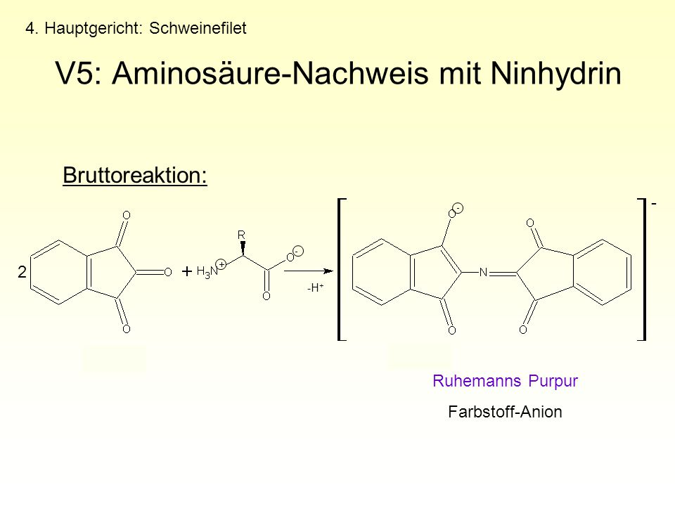 V5: Aminosäure-Nachweis mit Ninhydrin