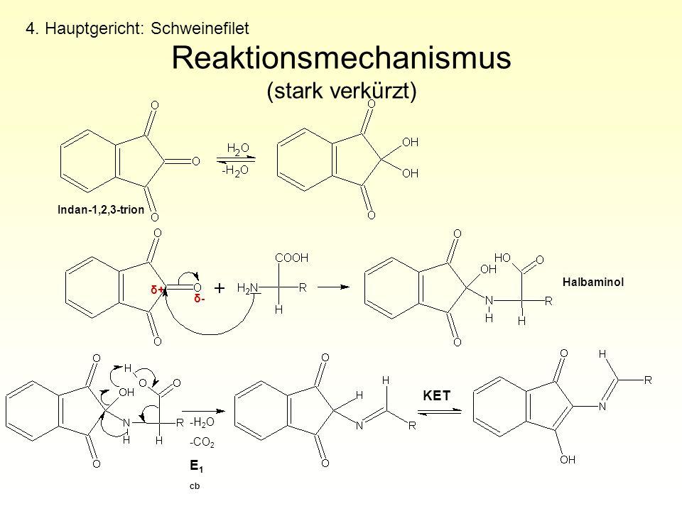 Reaktionsmechanismus (stark verkürzt)