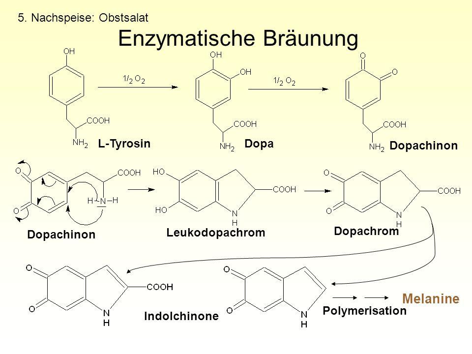Enzymatische Bräunung