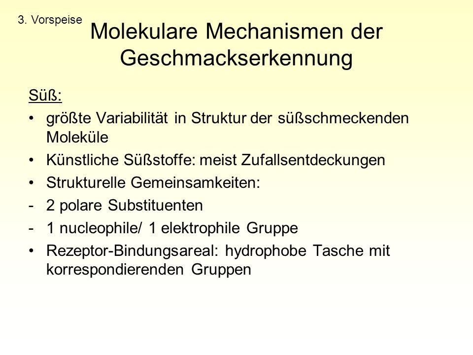 Molekulare Mechanismen der Geschmackserkennung