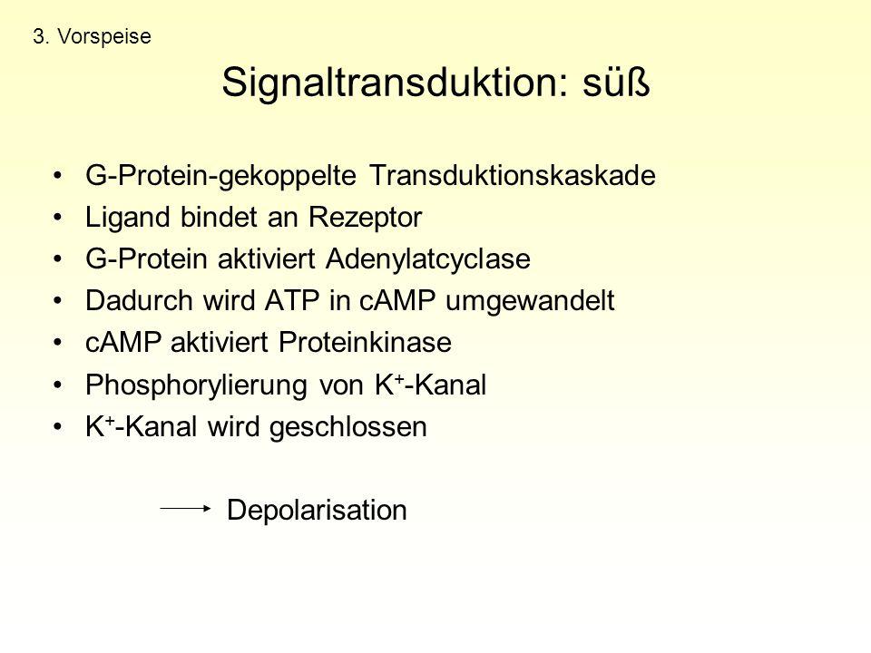 Signaltransduktion: süß