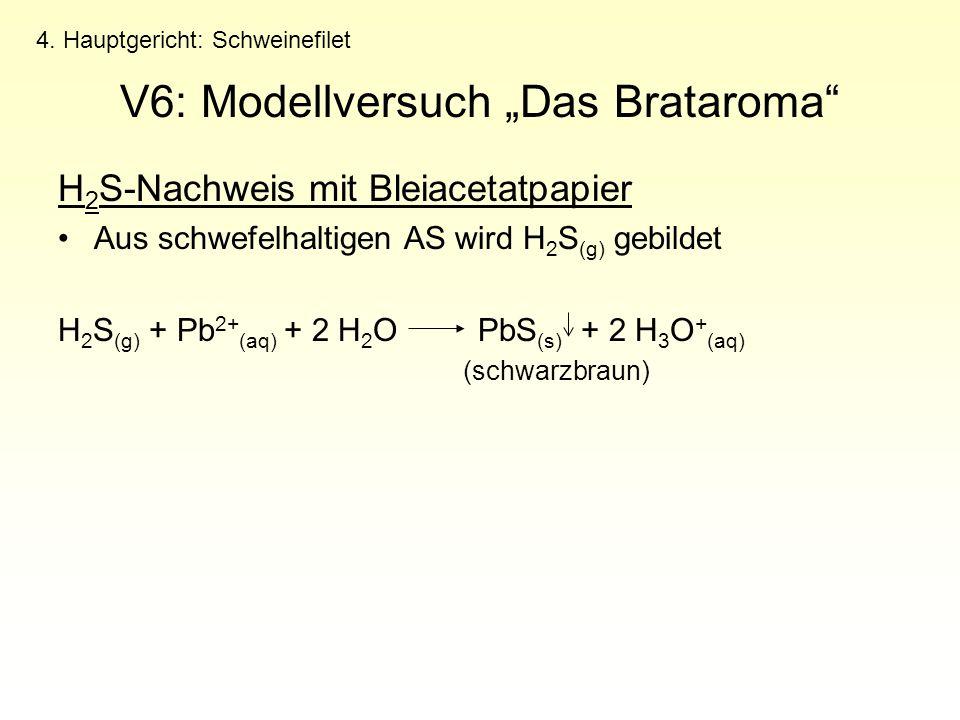 "V6: Modellversuch ""Das Brataroma"
