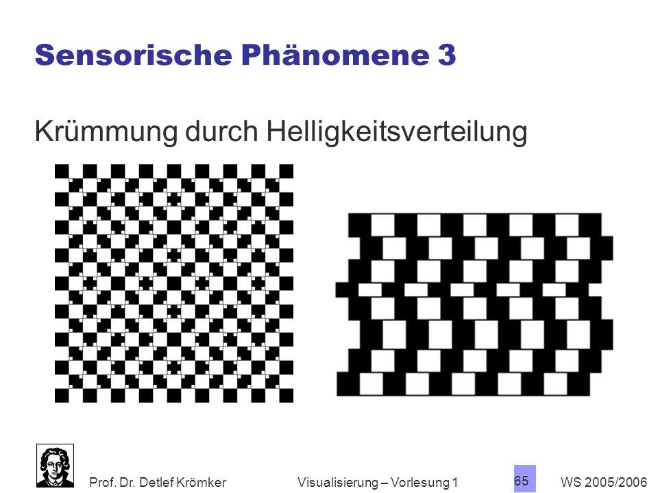 Sensorische Phänomene 3