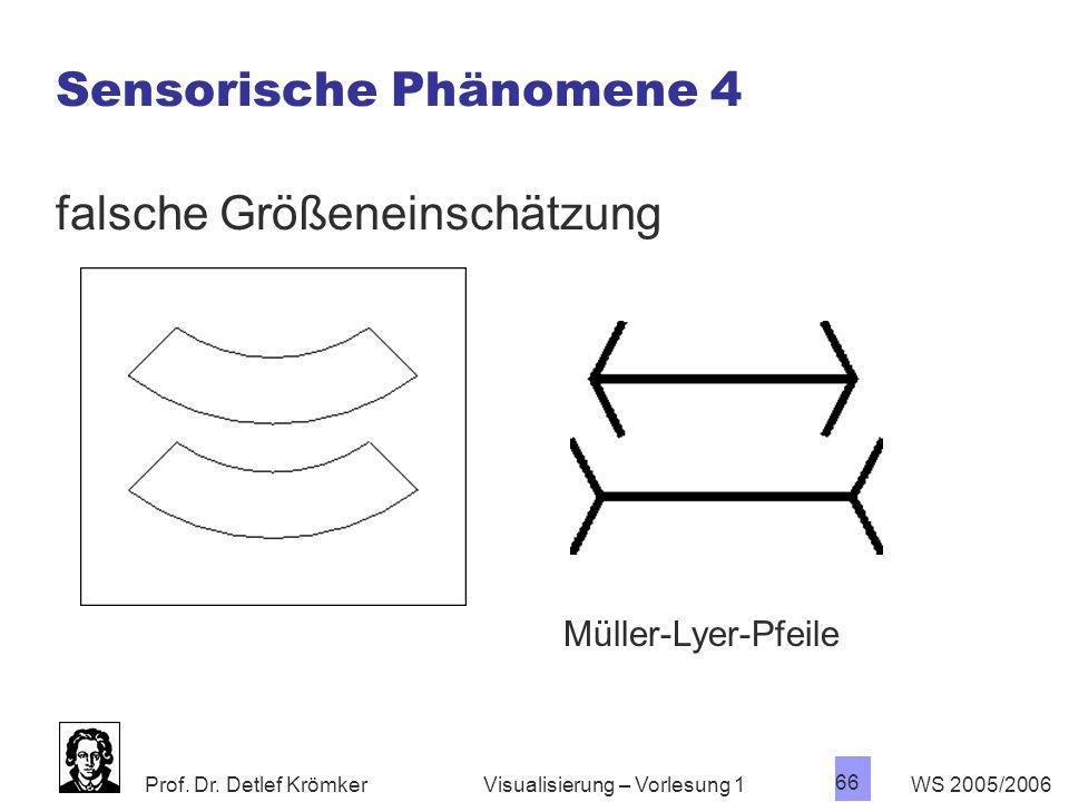 Sensorische Phänomene 4