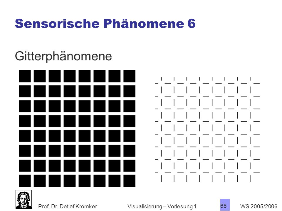 Sensorische Phänomene 6