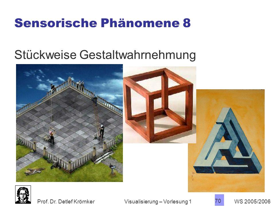Sensorische Phänomene 8
