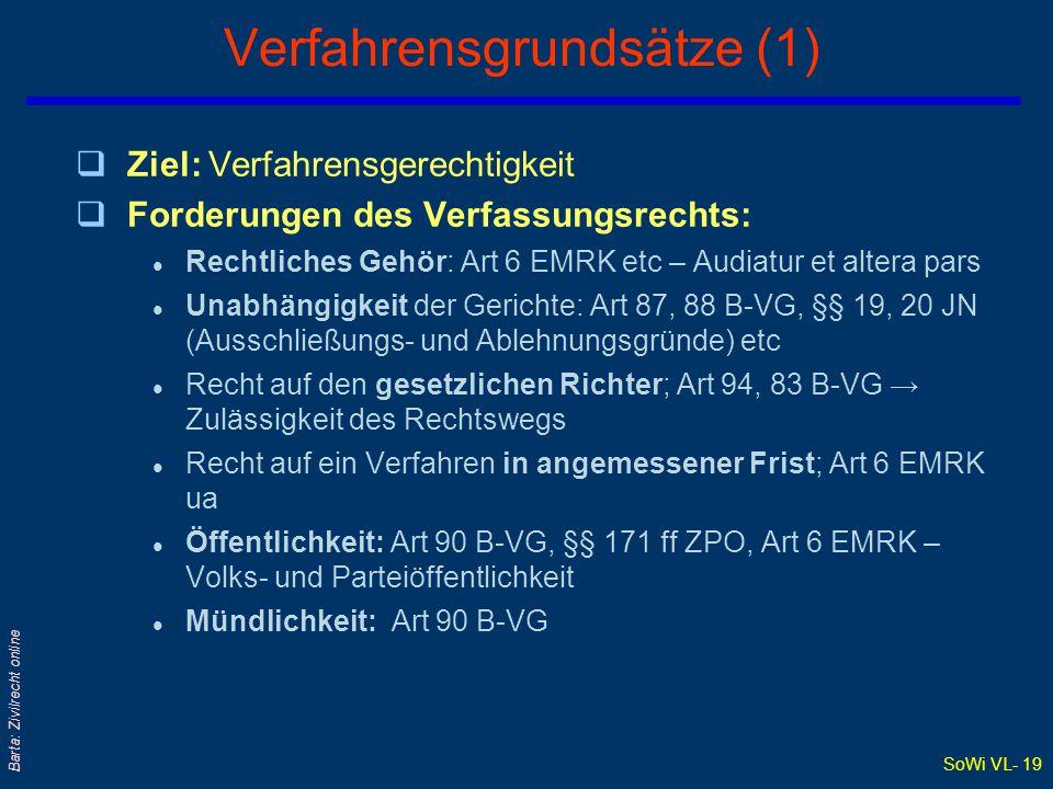 Verfahrensgrundsätze (1)