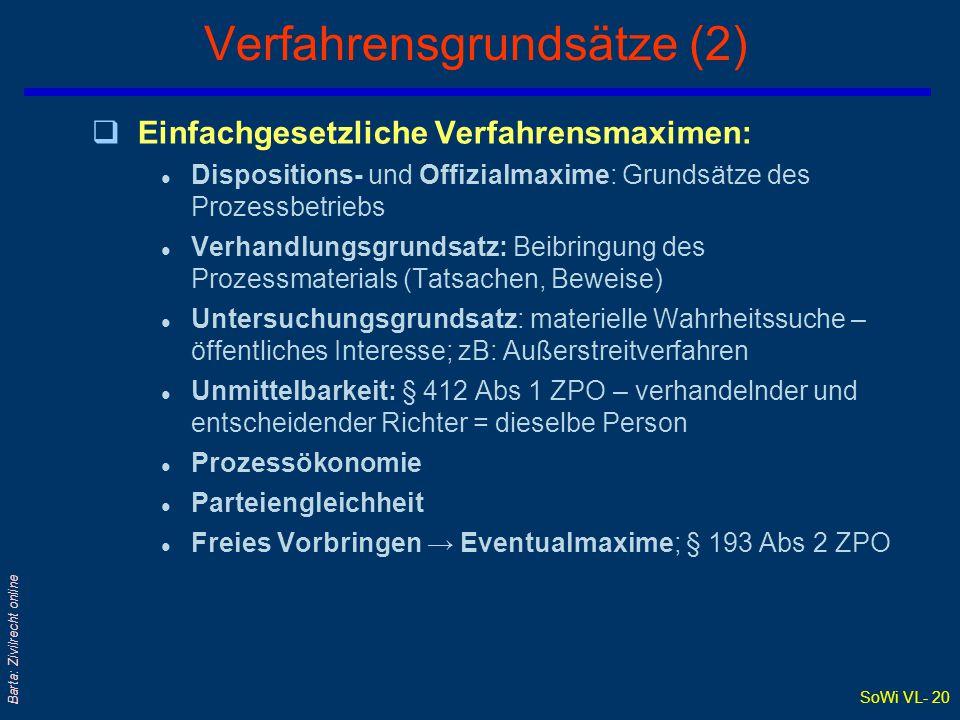 Verfahrensgrundsätze (2)
