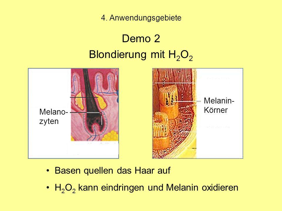Demo 2 Blondierung mit H2O2 Basen quellen das Haar auf