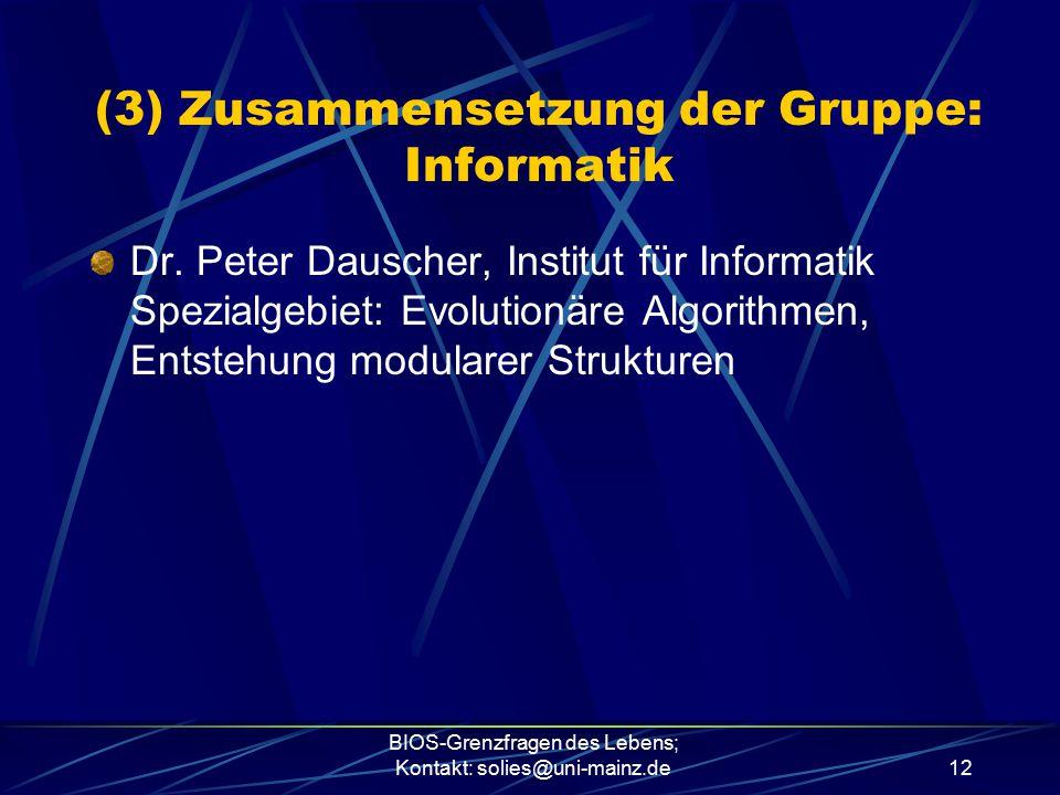 (3) Zusammensetzung der Gruppe: Informatik