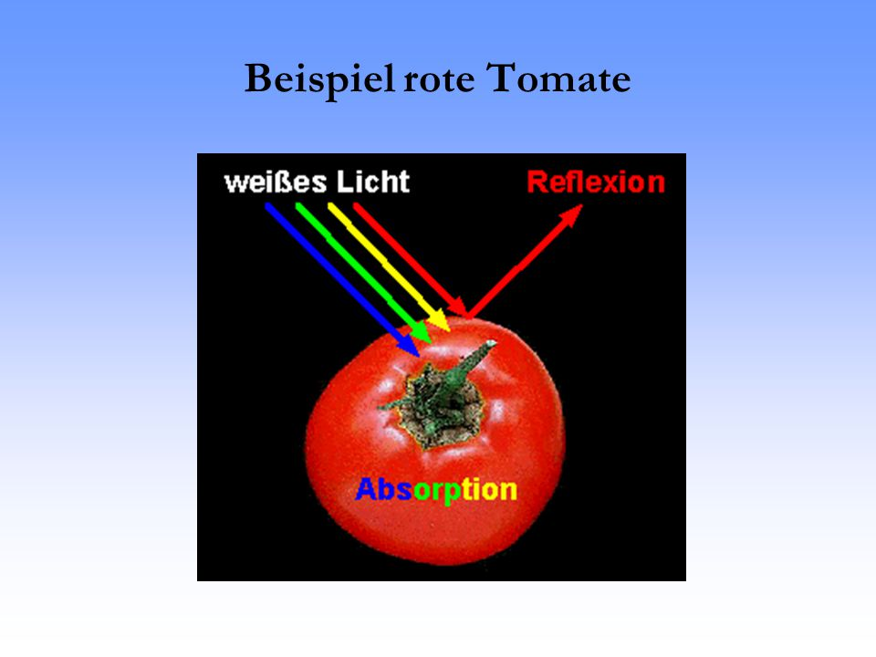 Beispiel rote Tomate