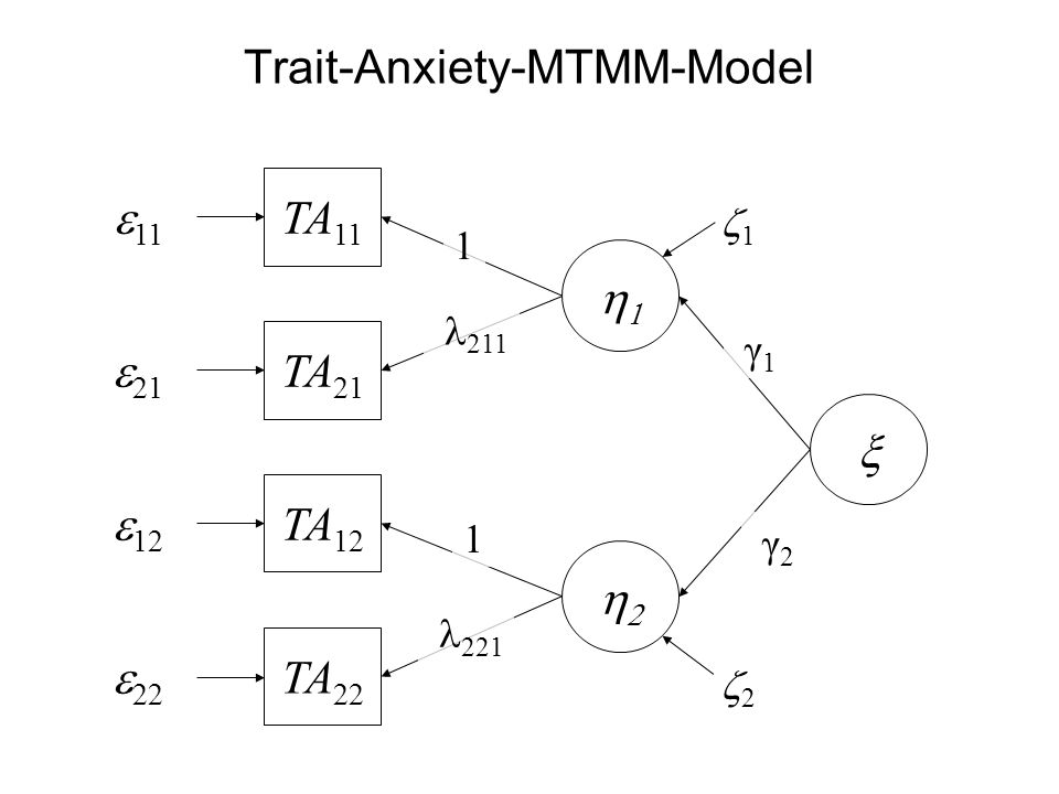 Trait-Anxiety-MTMM-Model