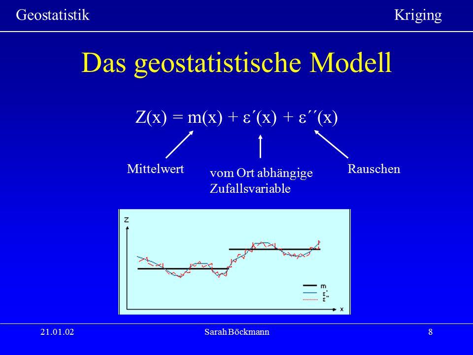 Das geostatistische Modell