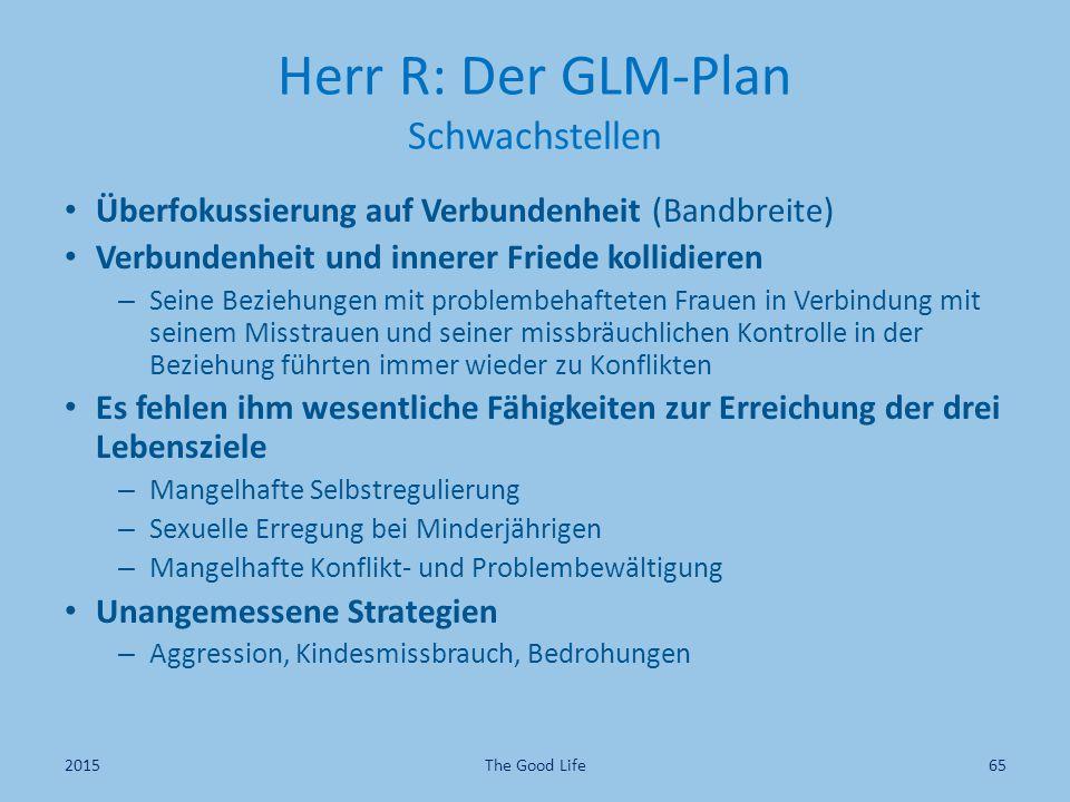 Herr R: Der GLM-Plan Schwachstellen