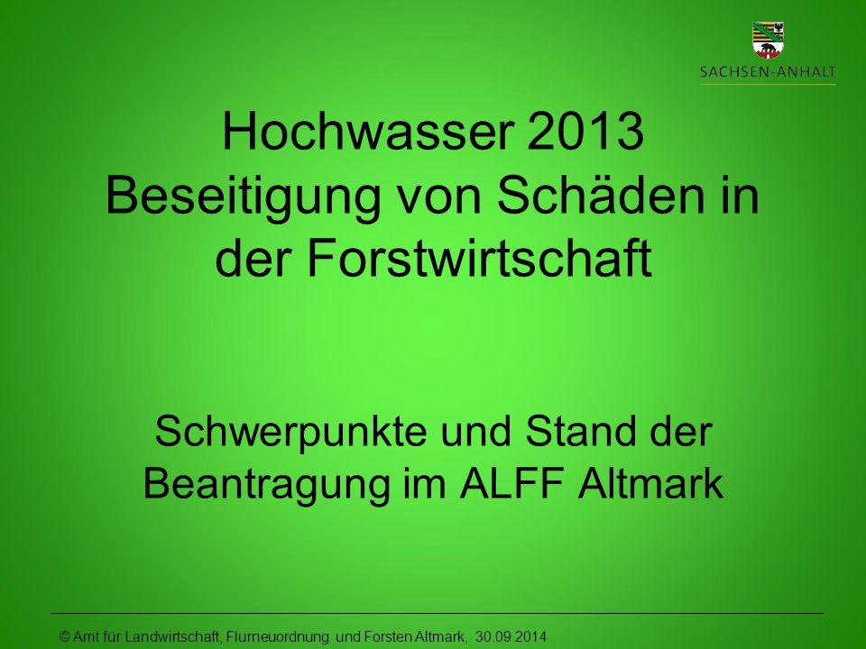 Hochwasser 2013 Beseitigung von Schäden in der Forstwirtschaft Schwerpunkte und Stand der Beantragung im ALFF Altmark