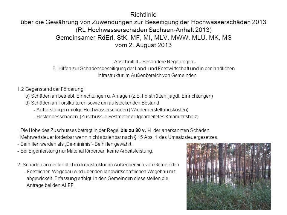 Richtlinie über die Gewährung von Zuwendungen zur Beseitigung der Hochwasserschäden 2013 (RL Hochwasserschäden Sachsen-Anhalt 2013) Gemeinsamer RdErl. StK, MF, MI, MLV, MWW, MLU, MK, MS vom 2. August 2013