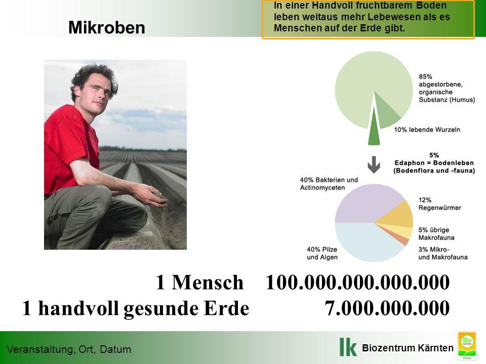 1 handvoll gesunde Erde 7.000.000.000 Mikroben Mikroben