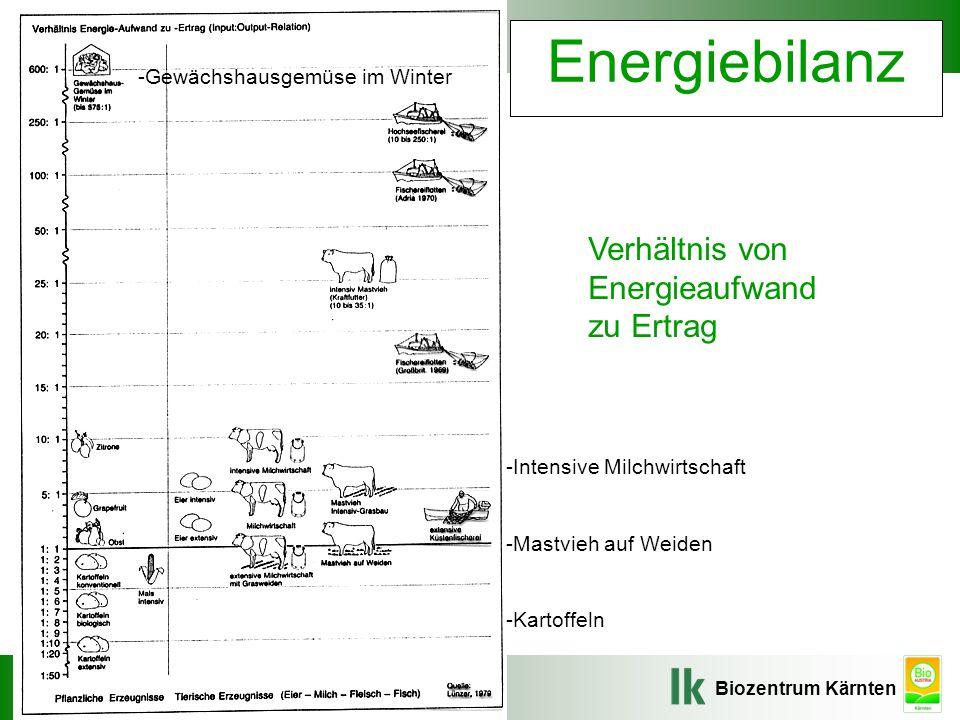 Energiebilanz Verhältnis von Energieaufwand zu Ertrag