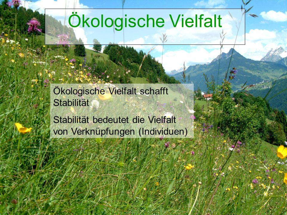 Ökologische Vielfalt Ökologische Vielfalt schafft Stabilität