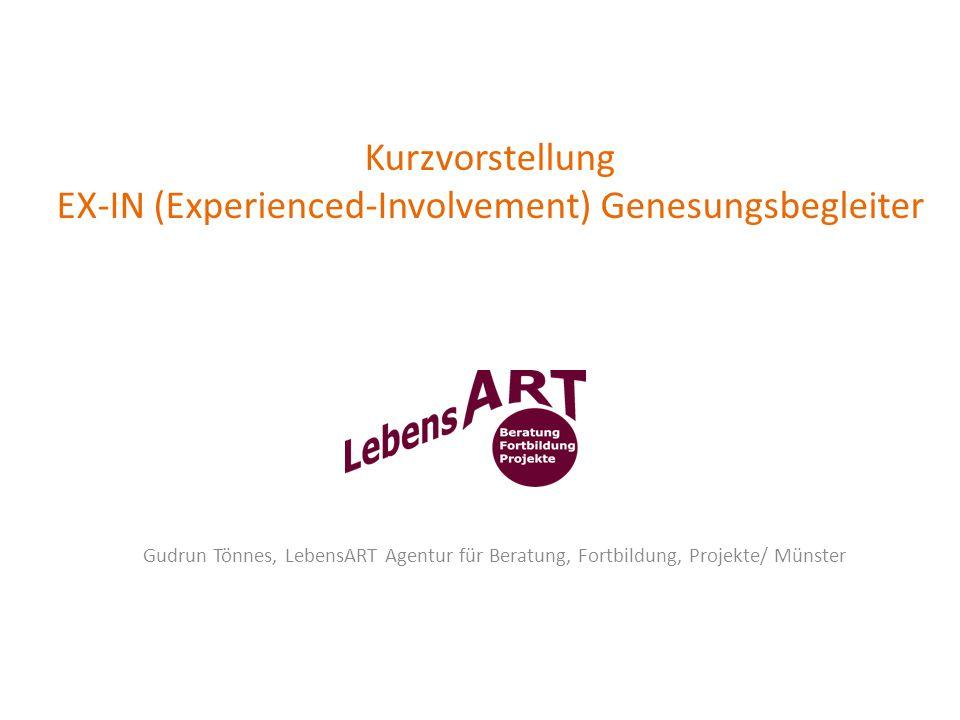 Kurzvorstellung EX-IN (Experienced-Involvement) Genesungsbegleiter