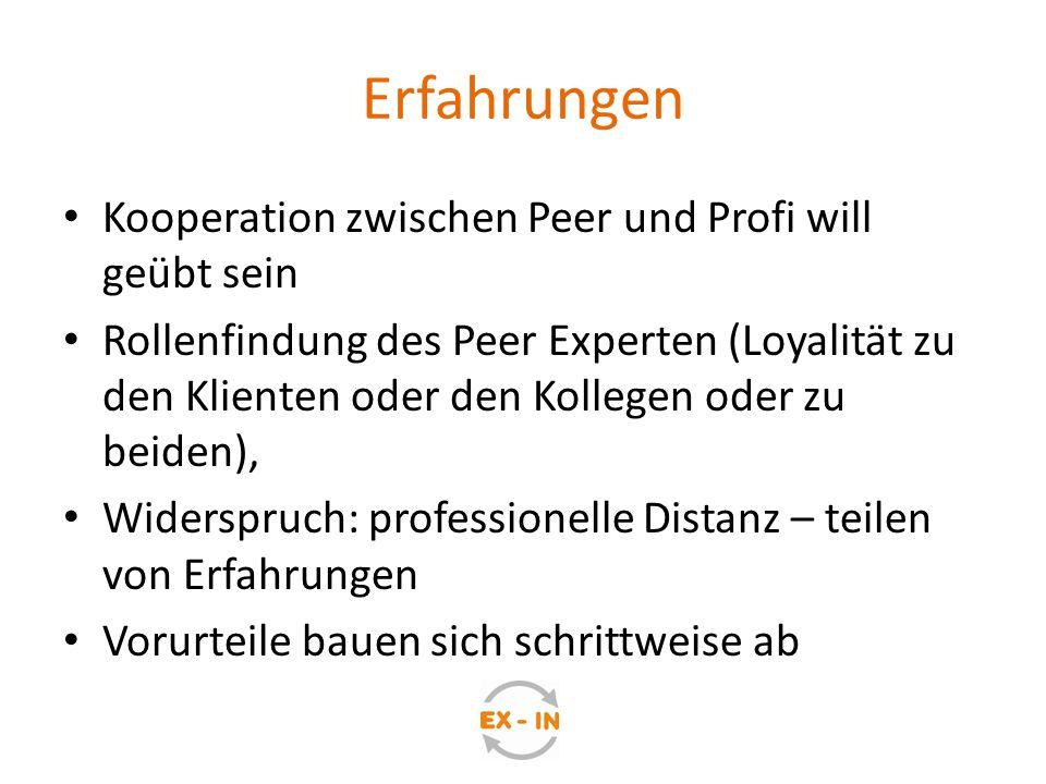 Erfahrungen Kooperation zwischen Peer und Profi will geübt sein