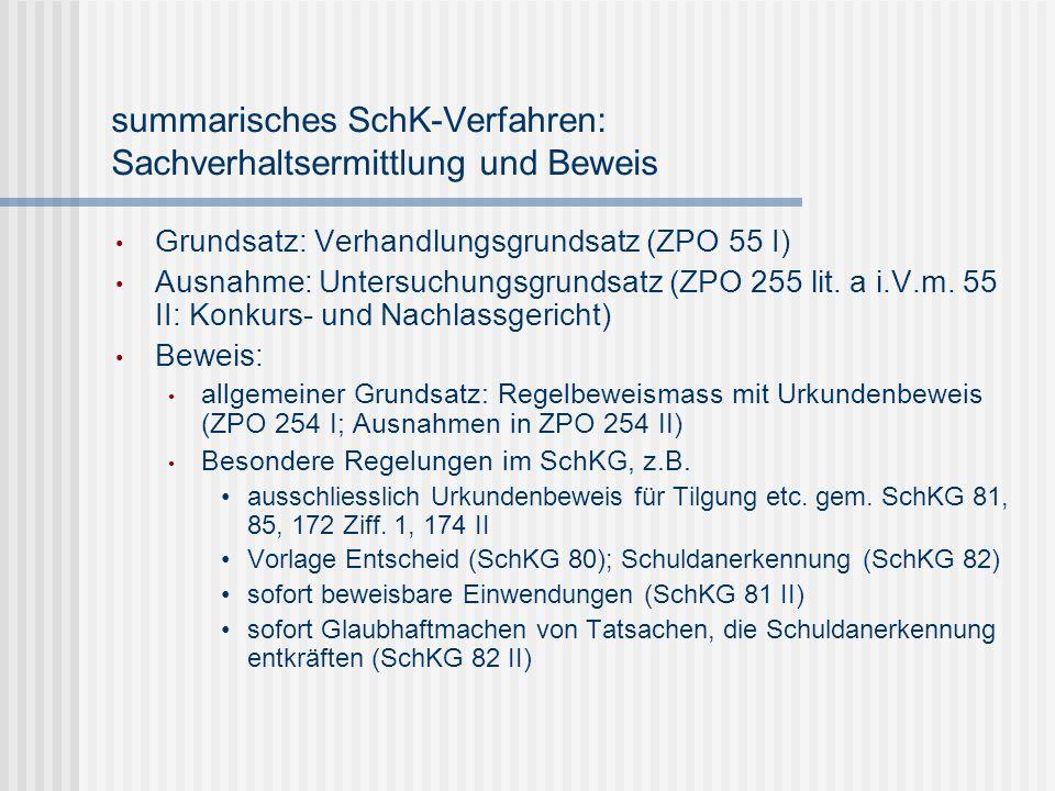summarisches SchK-Verfahren: Sachverhaltsermittlung und Beweis