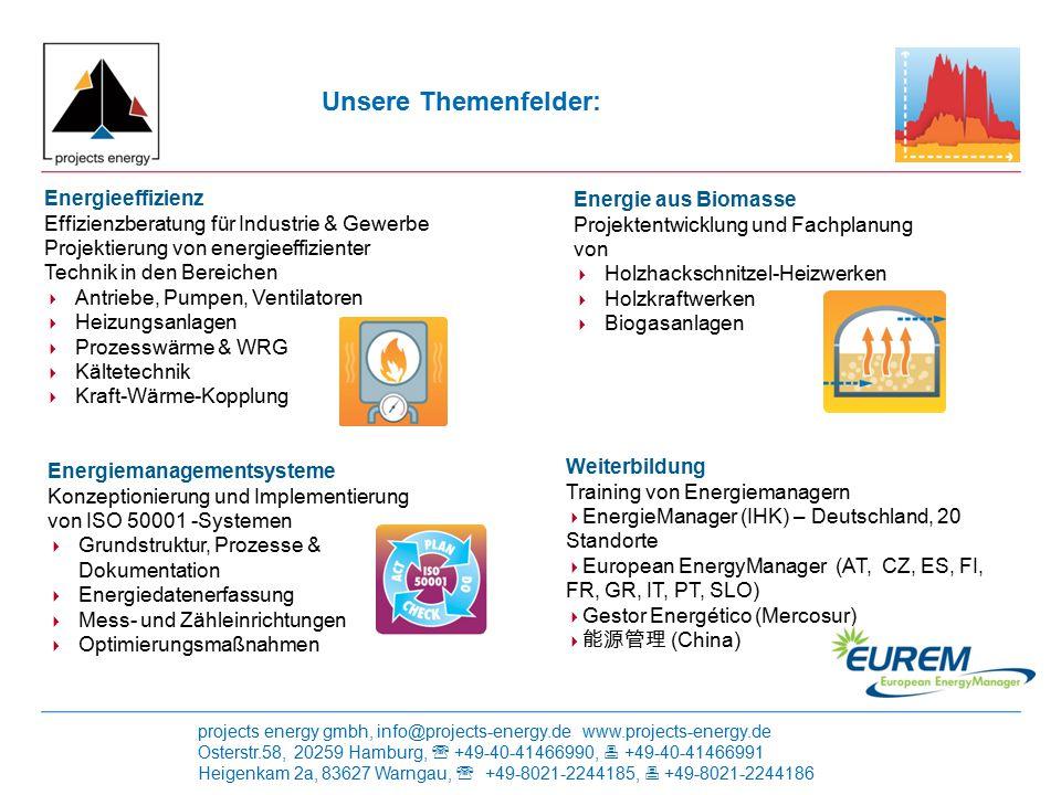 Unsere Themenfelder: Energieeffizienz Energie aus Biomasse