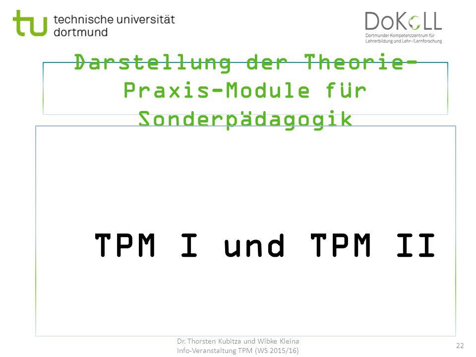 Darstellung der Theorie-Praxis-Module für Sonderpädagogik
