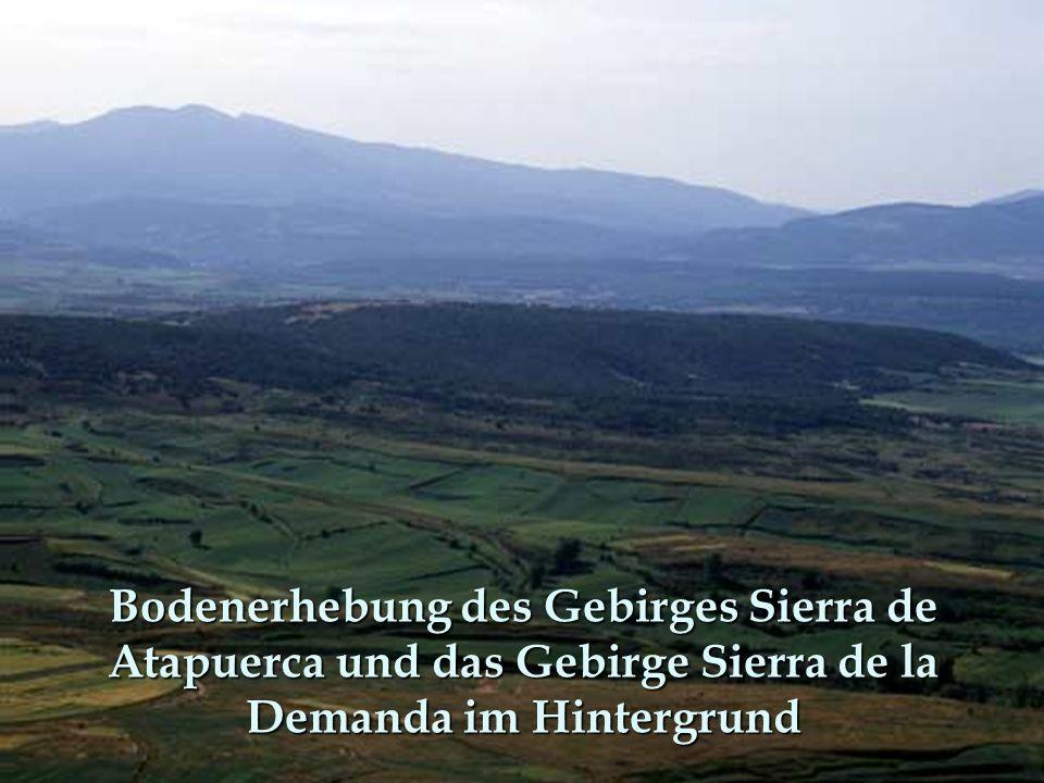 Bodenerhebung des Gebirges Sierra de Atapuerca und das Gebirge Sierra de la Demanda im Hintergrund