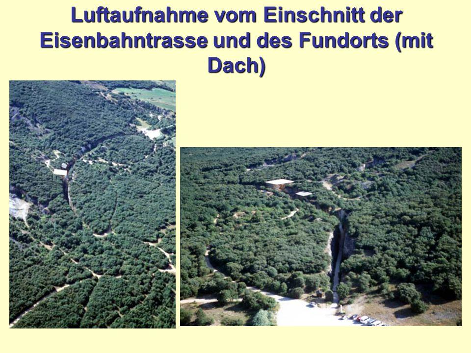 Luftaufnahme vom Einschnitt der Eisenbahntrasse und des Fundorts (mit Dach)
