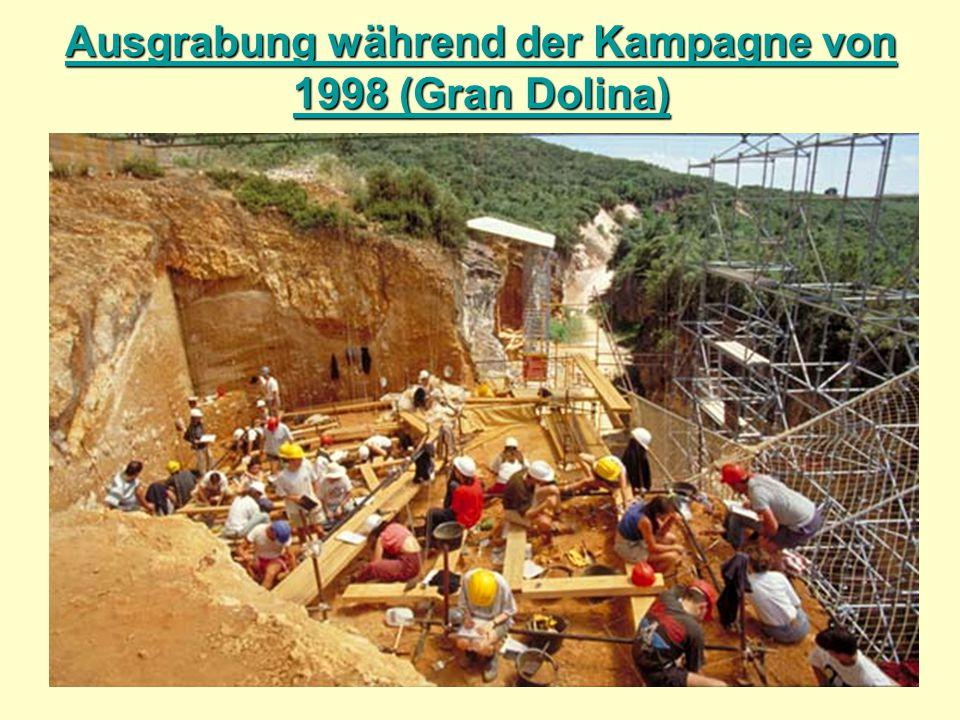 Ausgrabung während der Kampagne von 1998 (Gran Dolina)