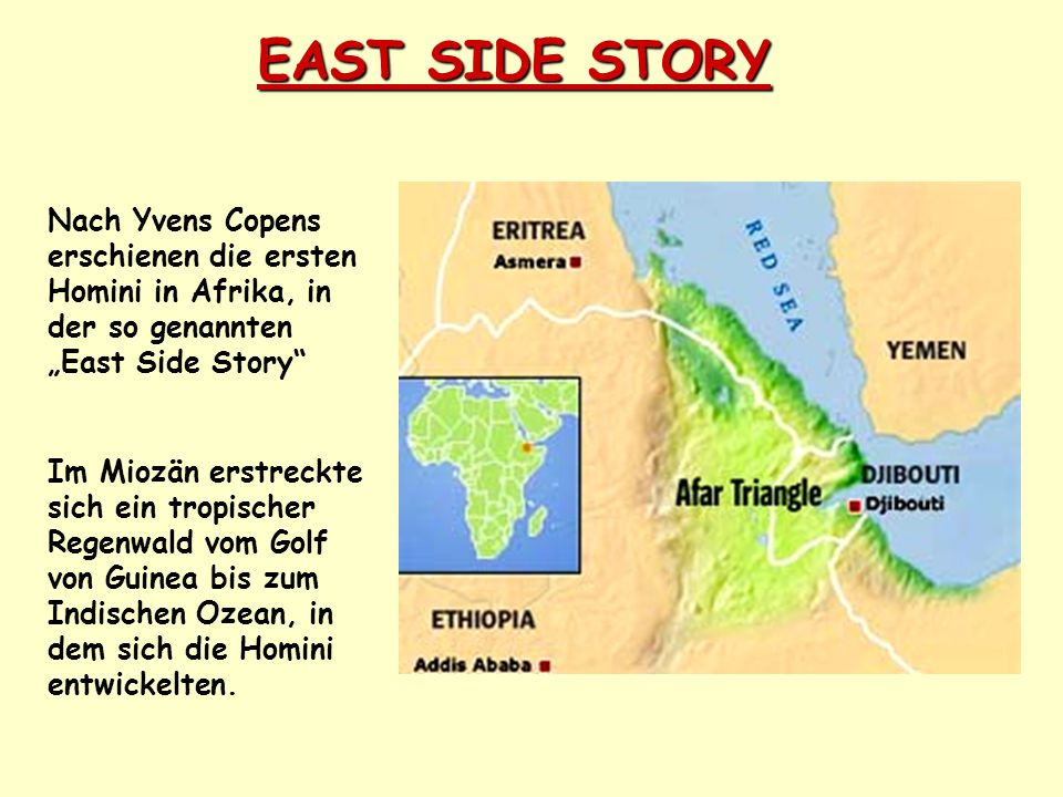 """EAST SIDE STORY Nach Yvens Copens erschienen die ersten Homini in Afrika, in der so genannten """"East Side Story"""