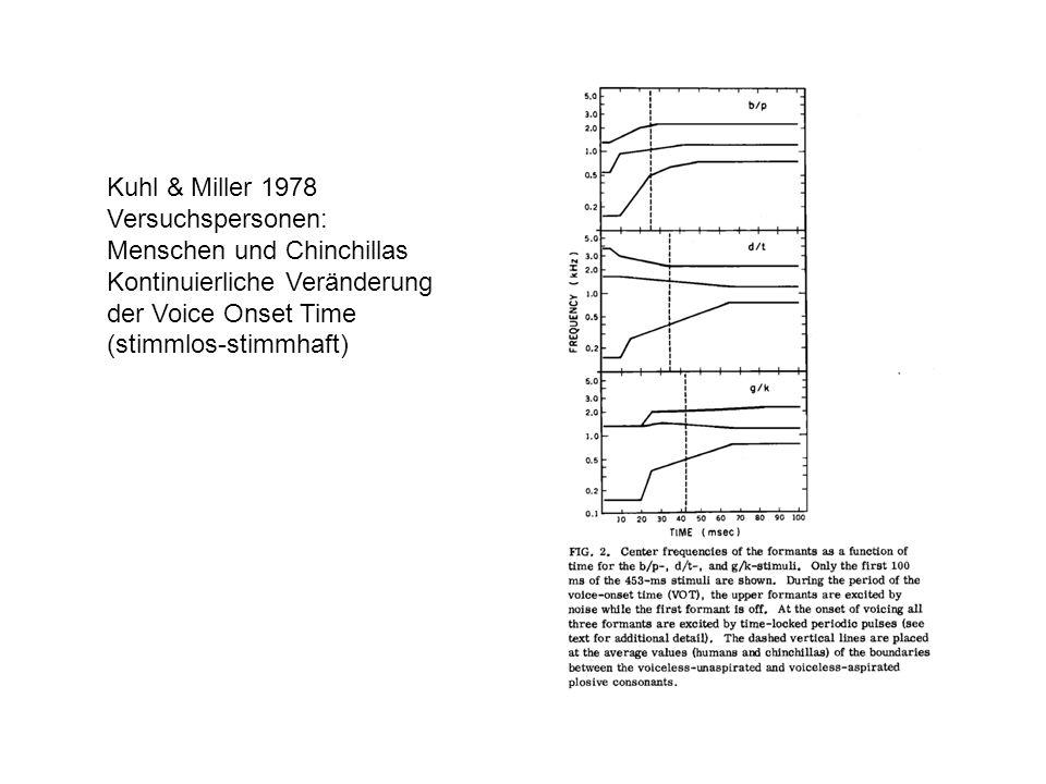 Kuhl & Miller 1978 Versuchspersonen: Menschen und Chinchillas. Kontinuierliche Veränderung. der Voice Onset Time.