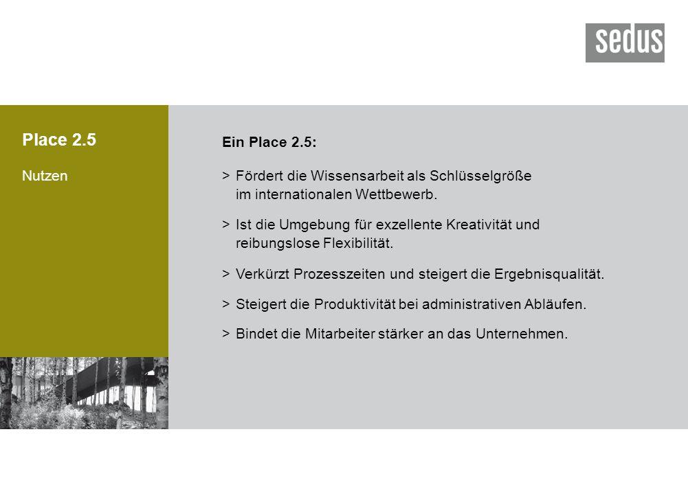 Place 2.5 Ein Place 2.5: Nutzen