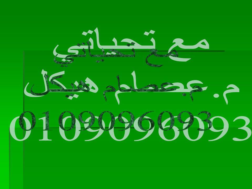 مع تحياتي م.عصام هيكل 0109096093