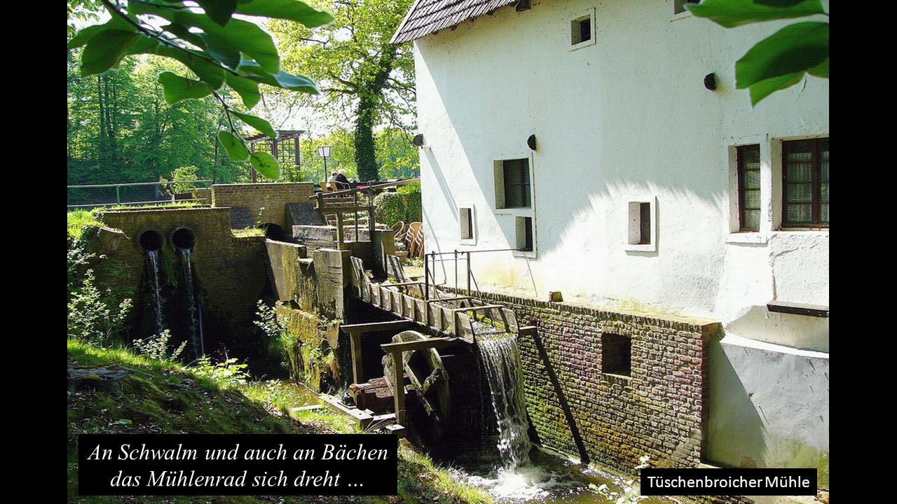 An Schwalm und auch an Bächen das Mühlenrad sich dreht …
