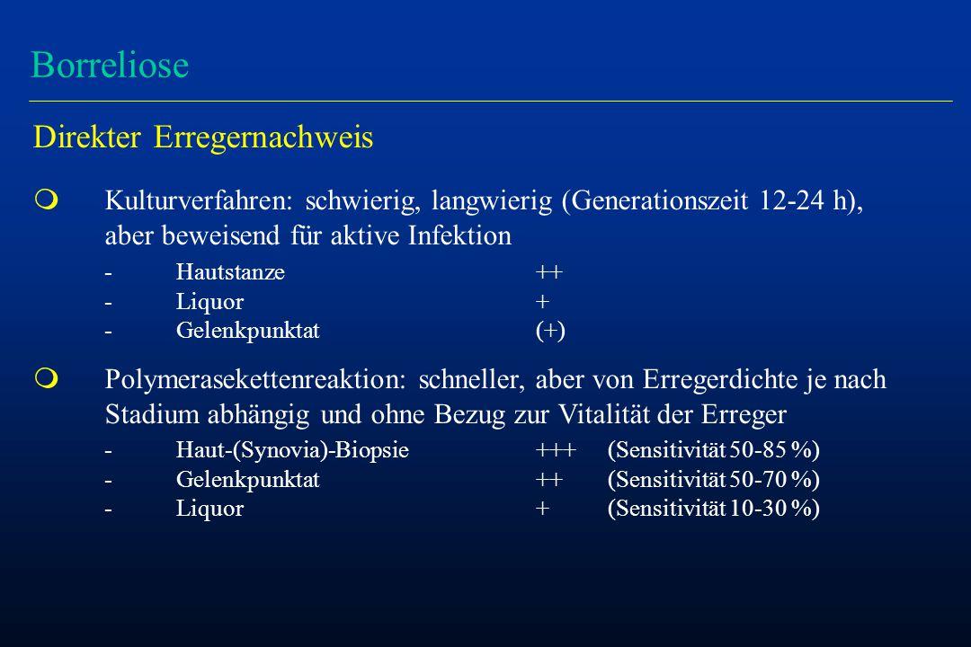 Borreliose Direkter Erregernachweis