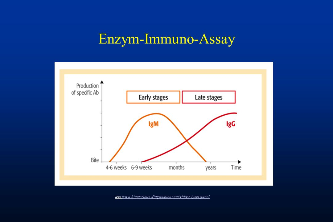 Enzym-Immuno-Assay aus www.biomerieux-diagnostics.com/vidasr-lyme-panel