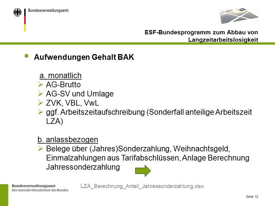 Aufwendungen Gehalt BAK a. monatlich AG-Brutto AG-SV und Umlage