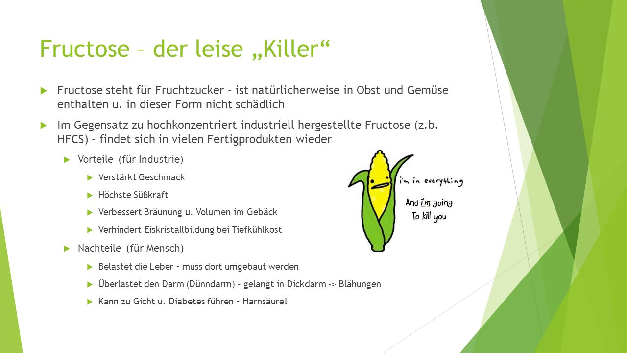 "Fructose – der leise ""Killer"